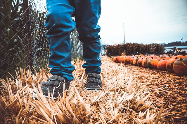 image of a child in a pumpkin patch